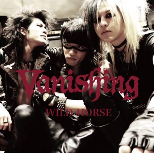 Vanishing - Wild Horse